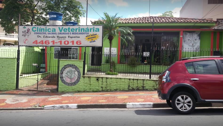 Clínica Veterinária em Santo André