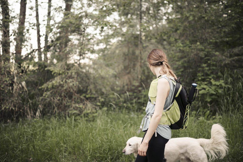 Passeando com o seu cachorro