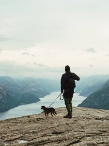 Turistando com seu animal